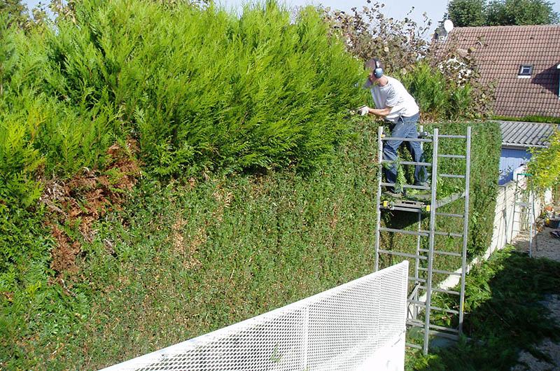 Entretien de jardin duhamel paysagiste for Entretien jardin 27